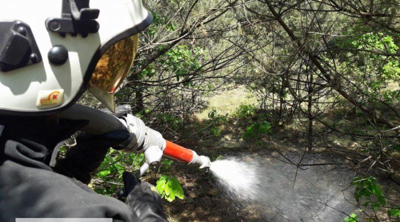 Duży pożar lasu w gminie Aleksandrów