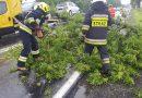Złamany konar drzewa oraz zalana droga w Przygłowie.