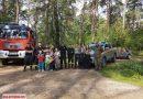 Wspólne sprzątanie lasu. Akcja #UNasCzystyLas